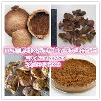 浩宇 鞣花酸40%  90% 厂家直销 现货供应