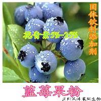 蓝莓粉 固体饮料添加剂 兰州厂家现货
