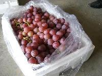 苹果形葡萄串袋、保鲜袋