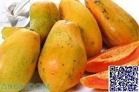 优质木瓜香精批发,烘焙专用,耐高温香精价格
