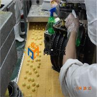 芝麻球滚筒上粉机-生产设备先进