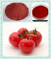 番茄粉 西红柿粉 西红柿提取物 天然果蔬粉 现货供应