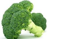 厂家直销供应脱水蔬菜粉西兰花粉 脱水西兰花粉 QS认证 品质保证