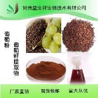 葡萄籽提取物 葡萄籽粉