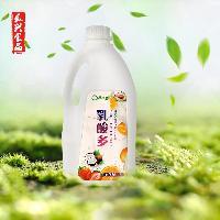 真果真香乳酸多 酸奶饮料优多乳酸菌长兴食品直发饮品