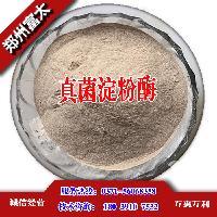 供应商真菌淀粉酶