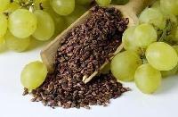 葡萄籽提取物 原花青素95% 葡萄果粉 固体饮料