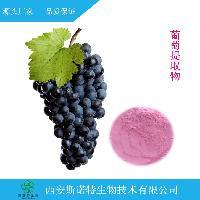 葡萄籽提取物 OPC 95%原花青素 斯诺特生物 厂家直销