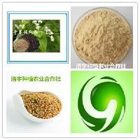 荞麦提取物 荞麦蛋白50% 苦荞黄酮50%