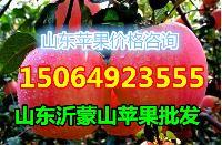 2017年山东省红富士苹果产地价格
