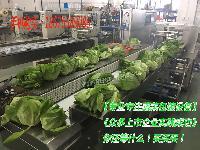 全自动保鲜蔬菜包装机