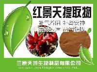 天然红景天提取物 含量3% 红景天甙