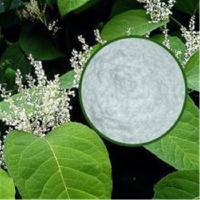 白藜芦醇98% 兰州厂家现货直销