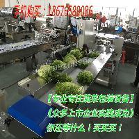 蔬菜防雾膜包装机