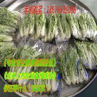 湖南叶菜保鲜包装机