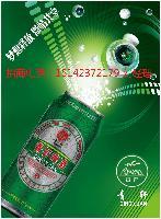 9罐装塑包啤酒招商|9连包啤酒代理