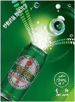 新款啤酒诚招啤酒代理商|普兰店|庄河|大石桥