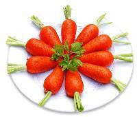 胡萝卜提取物 销售 厂家 价格 含量 批发