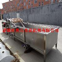 多功能水浴式油麦菜清洗设备