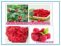 树莓粉、纯天然树莓汁粉 树莓浆粉(无任何香精色素)喷雾干燥