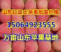 最近红富士苹果价格多少钱,山东苹果批发价格行情