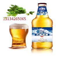 500ml纯生风味瓶装啤酒