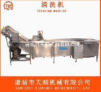TSQX-5800小松菜网带输送式清洗机(蔬菜成套加工设备)