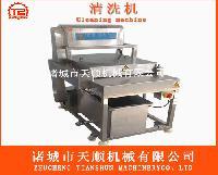 橘子清洗加工设备TSXM-30平行式毛刷清洗机