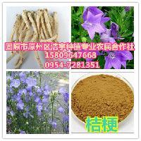 桔梗提取物20:1厂家直销桔梗粉 1kg起订现货包邮桔梗皂甙10%