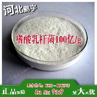 生产厂家嗜酸乳杆菌100亿/g乳酸菌冻干粉。