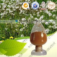 蒲公英提取物10:1 固体液体饮料代加工 oem 植物提取代加工