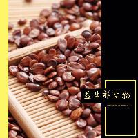 酸枣仁提取物10:1 酸枣仁酵素 酸枣仁浸膏