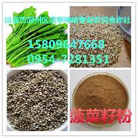 芹菜籽提取物 香芹粉 厂家直销 苦芹子粉