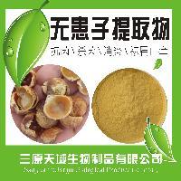 *无患子提取物 无患子皂甙苷40% 优质天然原料提取 质量保证