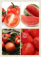 益生祥 油菜柳橙酵素粉 排毒养颜 品质保证