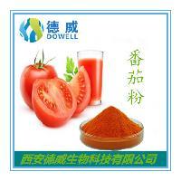 番茄果粉 番茄粉 番茄汁粉批发价格 西红柿果粉