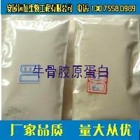 厂家直销 优质 牛骨胶原蛋白粉  牛骨胶原蛋白肽价格