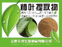 厂家供应 柿子叶提取物 10:1柿子叶黄酮 清热* * 品质保证