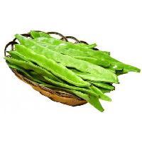 新鲜食材供应商农产品一站式采购配送食堂服务--扁豆