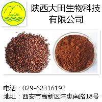 供应葡萄籽提取物原花青素95%