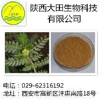 供应刺蒺藜提取物40%60%80%