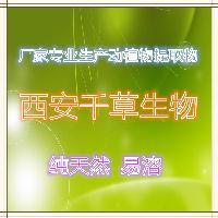 枣叶提取物厂家生产植物提取物