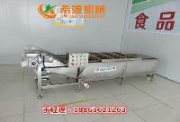 专业泡菜清洗机加工设备厂家
