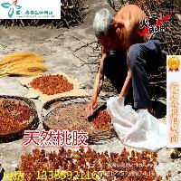 天然桃胶 食品级桃胶 增稠剂 高粘度含量99 桃胶粉 厂家现货供应