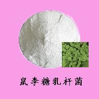 益生菌粉 禾田现货供应食品级鼠李糖乳杆菌 乳酸菌冻干粉