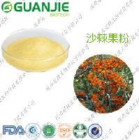 沙棘果粉 厂家直销 质量保证 活血化瘀抗癌