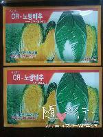 韩国进口CR黄心白菜种子