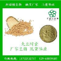 大豆酵素 代餐粉 现货供应