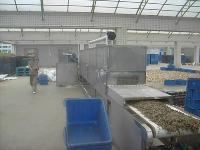 供應蟲草花烘干設備