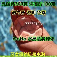 OoHo乳酸钙300g海藻酸100g微博水球原料 藻类球体水晶球海洋宝宝